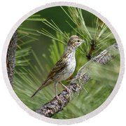 Young Lark Sparrow 1 Round Beach Towel