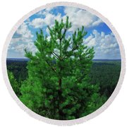 Young Pine Round Beach Towel