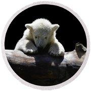 Young Polar Bear On A Log Round Beach Towel