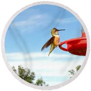 Young Rufous Round Beach Towel