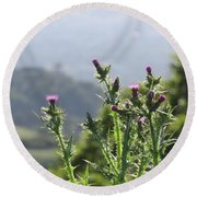 Young Thistles Round Beach Towel