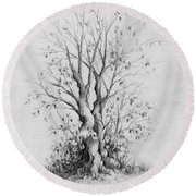 Young Tree Round Beach Towel by Rachel Christine Nowicki