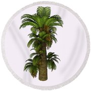 Zamites Tree Round Beach Towel