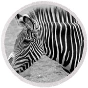 Zebra - Here It Is In Black And White Round Beach Towel