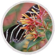 Zebra Butterfly With Blue Eyes Round Beach Towel