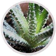 Zebra Cactus  Round Beach Towel
