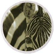 Zebra Close Up A Round Beach Towel