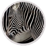 Zebra Head Round Beach Towel by Carlos Caetano