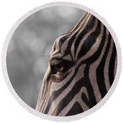 Zebra I Round Beach Towel