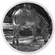 Zebra In Black And White Round Beach Towel