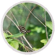 Zebra Longwing Butterfly About To Take Flight Round Beach Towel