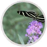 Zebra Longwing Butterfly  Round Beach Towel