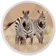 Zebra Pair Round Beach Towel