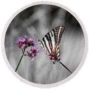 Zebra Swallowtail Butterfly And Stripes Round Beach Towel