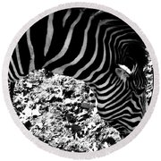 Zebra2 Round Beach Towel