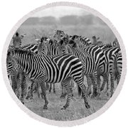 Zebras On The March Round Beach Towel