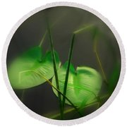 Zen Photography Iv Round Beach Towel