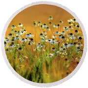 Zest For Life Round Beach Towel
