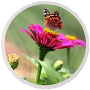 Zinnia Visitor Round Beach Towel