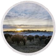 Zion Mountain Ranch Buffalo Herd Round Beach Towel