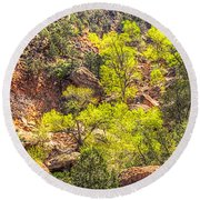 Zion National Park Small Tributary Of The Virgin River Round Beach Towel