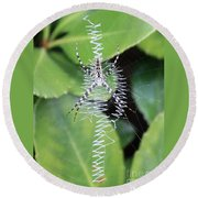 Zipper Spider Round Beach Towel