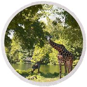 Zoo Landscape Round Beach Towel