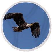American Bald Eagle In Flight Round Beach Towel