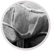 Close-up Of A Rose, Los Angeles County Round Beach Towel