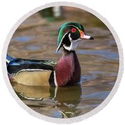 Curious Wood Duck Round Beach Towel