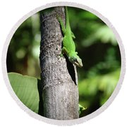 Green Lizard Round Beach Towel