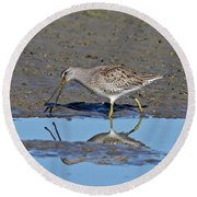 Long-billed Dowitcher Round Beach Towel