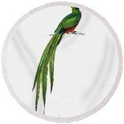 Pavonine Quetzal  Pharomachrus Pavoninus Illustrated By Charles Dessalines D Orbigny  1806 1876 3 Round Beach Towel