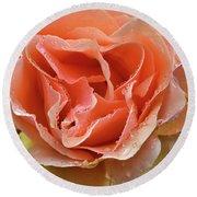 Salmon Pink Rose Round Beach Towel