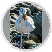 Seagull With Sail Round Beach Towel