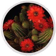 The Beauty Of Red  Round Beach Towel