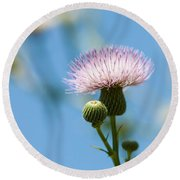 Thistle With Blue Sky Background Round Beach Towel