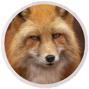 Russian Red Fox Round Beach Towel