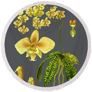 Orchid Old Print Round Beach Towel