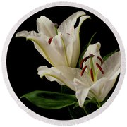 White Lily On Black. Round Beach Towel