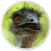 Australian Emu Outdoors Round Beach Towel