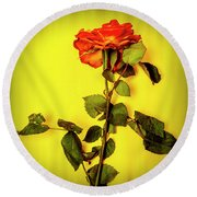 Dying Flower Against A Yellow Background Round Beach Towel