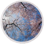Low Angle View Of Cherry Blossom Trees Round Beach Towel