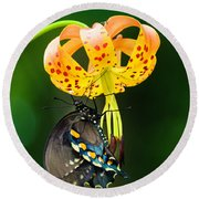 Swallowtail On Turks Cap Round Beach Towel by Donald Brown