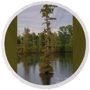 Tennesse Cypress In Wetland  Round Beach Towel