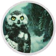Winter Owl Round Beach Towel
