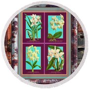 Antique Orchids Quatro On Rusted Metal And Weathered Wood Plank Round Beach Towel