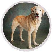 Portrait Of A Labrador Mixed Dog Round Beach Towel