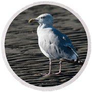 Seagull On Beach Round Beach Towel