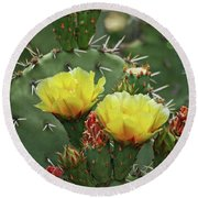 Yellow Prickly Pear Flowers Round Beach Towel